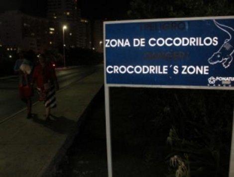 Concluye señalización y enrejado para prevenir ataques de cocodrilos en la laguna Nichupté de Cancún