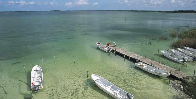 Crean en la Bahía del Espíritu Santo la primera red de zonas de refugio pesquero en el Caribe mexicano