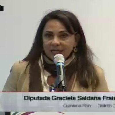 El IVA en alimento para mascotas podría provocar el abandono de hasta 500 mil animales, advierte diputada Graciela Saldaña