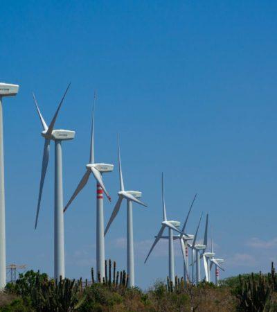 Grupo español Aldesa avanza trámites para construir parques eólicos en dos municipios de Yucatán