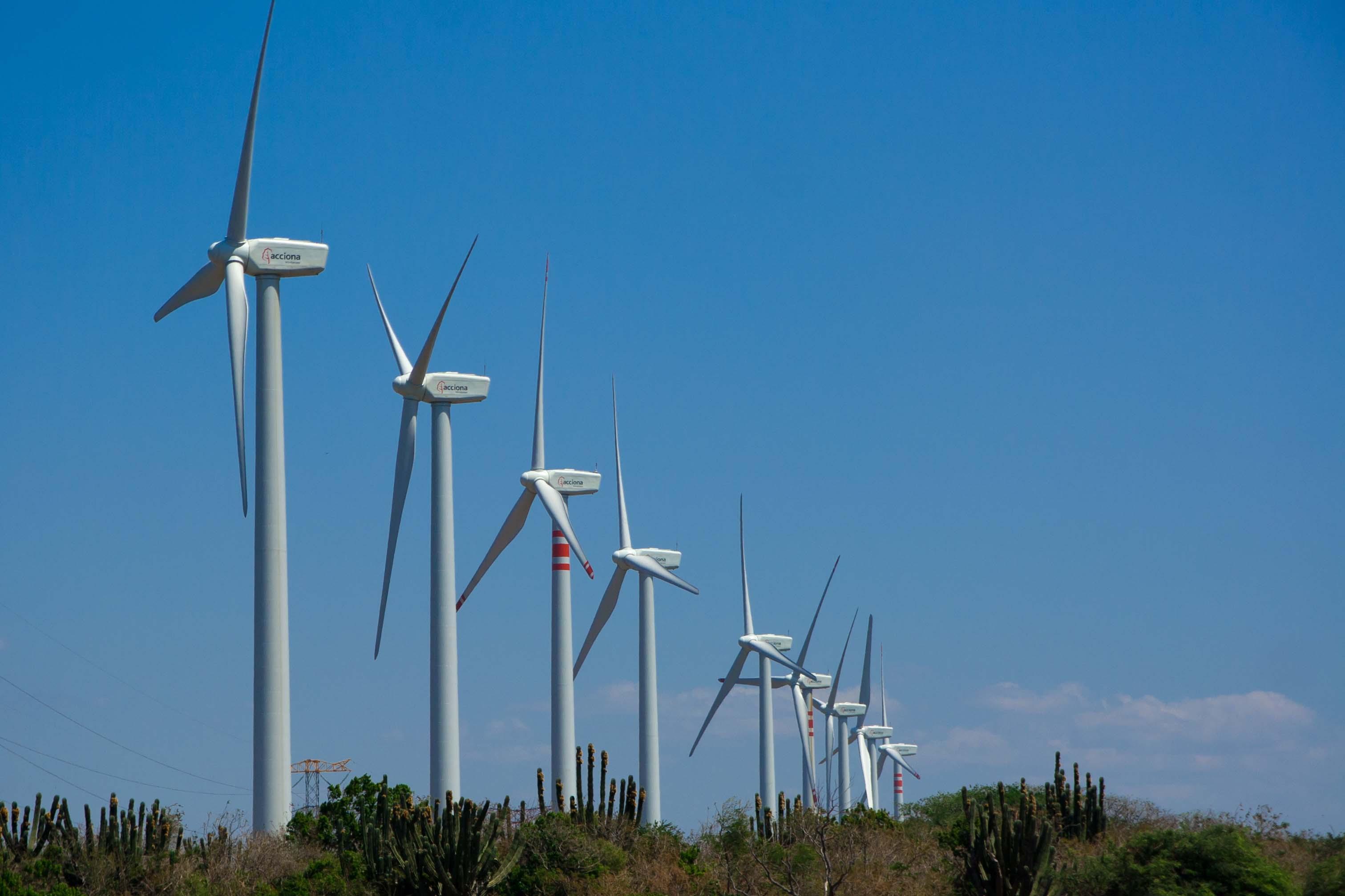 Reiteran autoridades estatales respaldo al proyecto del Parque Eólico en Cozumel