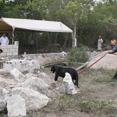 Acompañado de un jaguar, intenta 'Pepe Tigre' recuperar predio en Cancún que, dice, le fue despojado en 2011