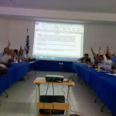 """Aprueba PAN """"alianza total"""" con el PRD en Quintana Roo"""