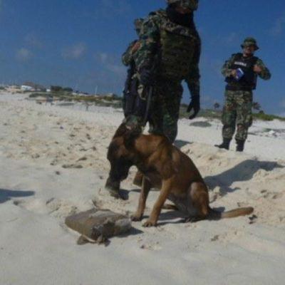 Recalan 3 kilos de marihuana en playa del Iberostar, en la Zona Hotelera de Cancún