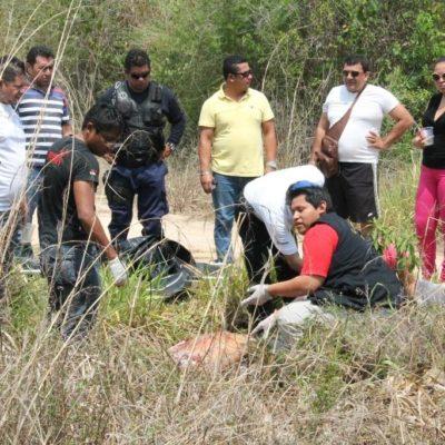 Asesinan a hombre a machetazos cerca del poblado de Laguna Guerrero
