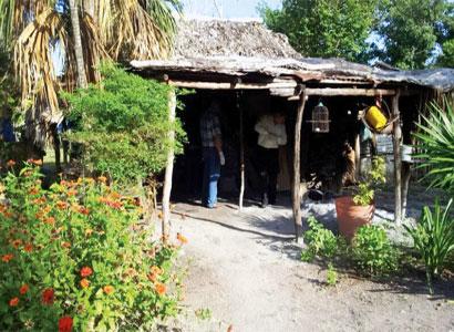 De 50 puñaladas, asesinan a una mujer en un rancho cerca de Oxtankah