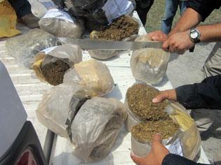Queman en Cozumel 71 kilos de cocaína y 30 kilos de marihuana