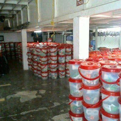 JUSTIFICACIÓN SACADA DE LA MANGA: Reconoce Gobierno de Borge que 10 mil despensas halladas en Cozumel son suyas, pero son para caso de huracán