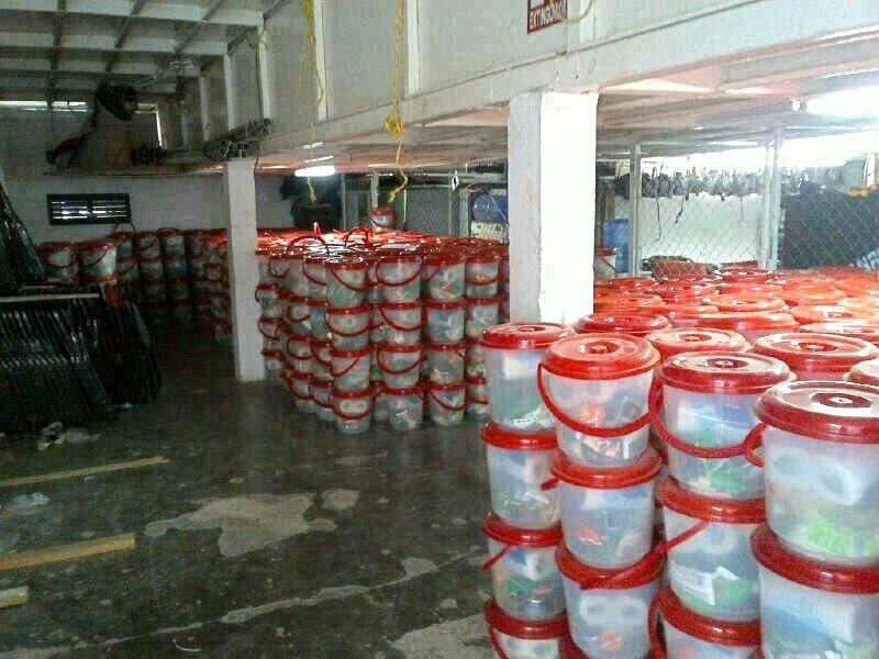 Encuentran 10 mil despensas en salón 'Moby Dick' de Cozumel y las atribuyen al PRI