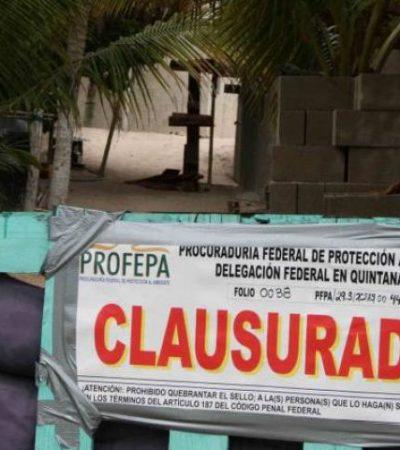 Clausuran predio costero en Tulum por construcción no autorizada sonbre la duna