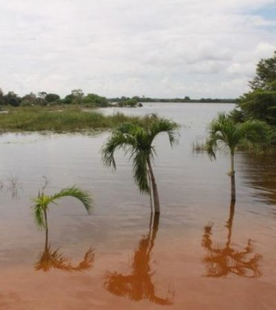 Se desborda la laguna de Noh-Bec en FCP por escurrimientos
