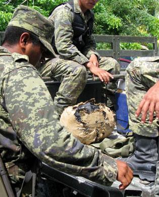 Recalan 6 kilos de marihuana en playa de Cozumel