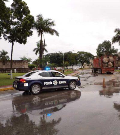 Aclara Ayuntamiento de OPB que Profepa realizó donación de palmeras para adornar Fuente Maya en Chetumal