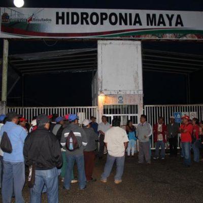 Por falta de pago del retroactivo salarial, protestan trabajadores de Hidroponia Maya en FCP