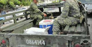 Recalan 30 kilos de marihuana en la costa oriental de Cozumel