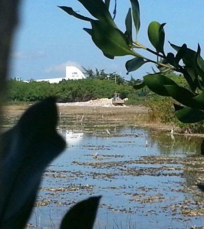 ECOCIDIO EN PUERTA DEL MAR: Denuncian relleno de manglar a espaldas de complejo turístico y hotelero de Cancún a 2 días de la revocación del PDU