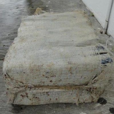 PRIMER RECALÓN DEL 2014: Hallan costal con 27 kilos de cocaína en costa oriental de Cozumel