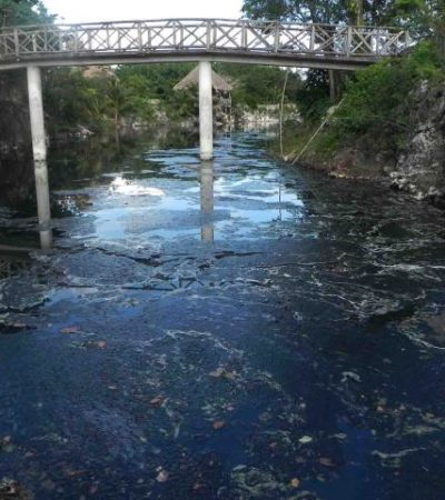 """Califican contaminación de ICA en cenote como de """"gran magnitud""""; la afectación, en predio de 'Chano' Toledo"""