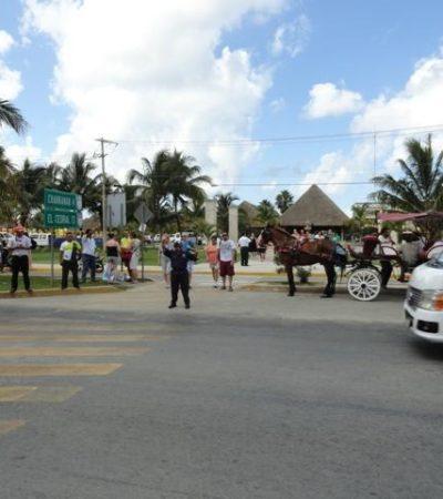 Se desbocó un caballo con calesa en Cozumel