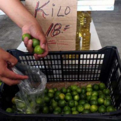 ESTRATEGIA CONTRA LA ESPECULACIÓN: Venden en Diconsa el kilo de limón en $18