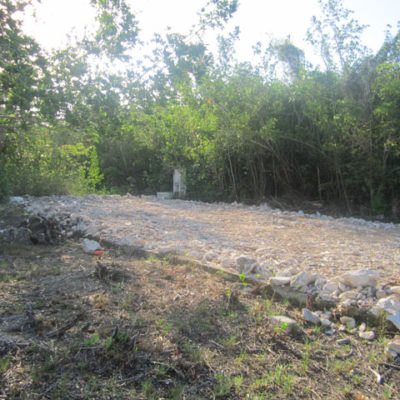 Denuncia Citymar nuevo caso de relleno de manglar en el norte de Cozumel