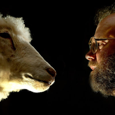 CLONES NO SERÁN PATENTADOS: Rechaza juez de EU petición de creadores de oveja Dolly para cobrar por cada animal clonado