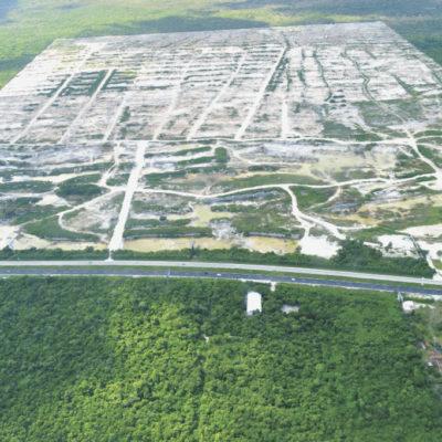 RECLAMAN MENOS AMBIGÜEDAD A LA PROFEPA: Más que boletines, demanda Senador frenar daño ecológico del 'Dragon Mart'