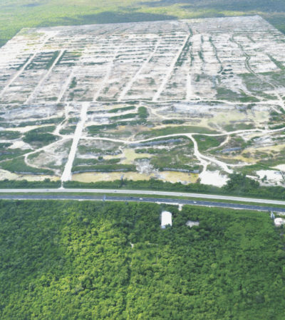 PONEN EN JAQUE AL 'DRAGON MART': Presenta Profepa denuncia penal ante PGR contra polémico proyecto por dañar biodiversidad