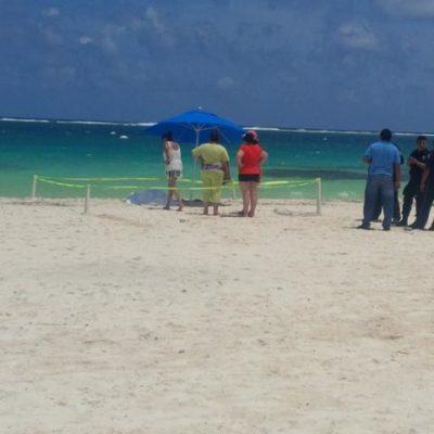 Muere turista poblana de 78 años mientras nadaba en Puerto Morelos