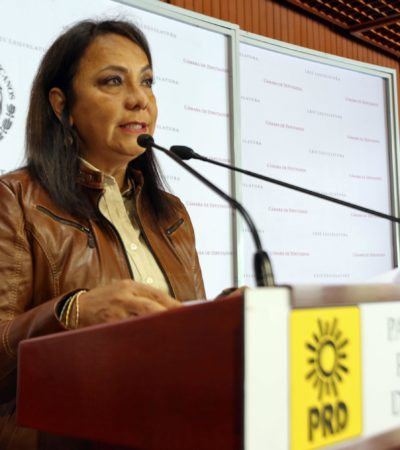 Anuncia diputada de QR foro organizado por el Congreso y la UNAM para celebrar el Día Mundial del Medio Ambiente