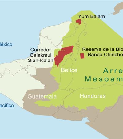 Gestionan 4 países 40 mdd para financiar acciones para proteger Sistema Arrecifal Mesoamericano