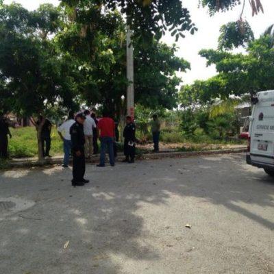 Confirman que último ejecutado en Cancún era 'chapulín'
