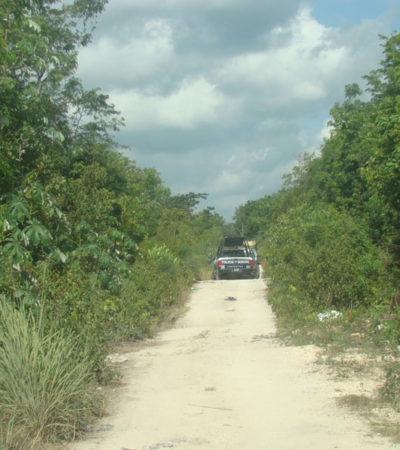Reportan el suicidio 39 del año en Cancún: Un veracruzano se cuelga de un árbol en Tierra Maya