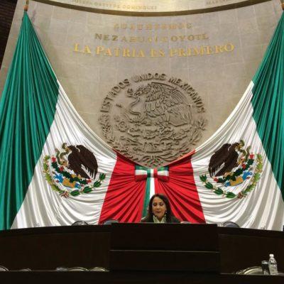 MÁS BUROCRACIA AMBIENTAL: Se pronuncia diputada Graciela Saldaña contra la creación nueva 'Agencia Nacional'