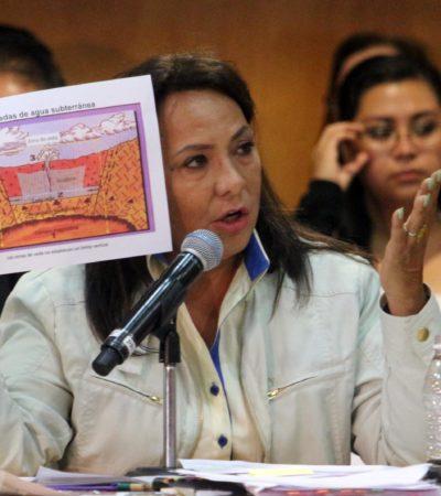 """""""El medio ambiente quedó fuera en la Ley de Energías Geotérmicas"""": Graciela Saldaña"""
