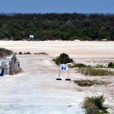 Por suspensión de obras, luce abandonado el terreno donde se planea el 'Dragon Mart Cancún'