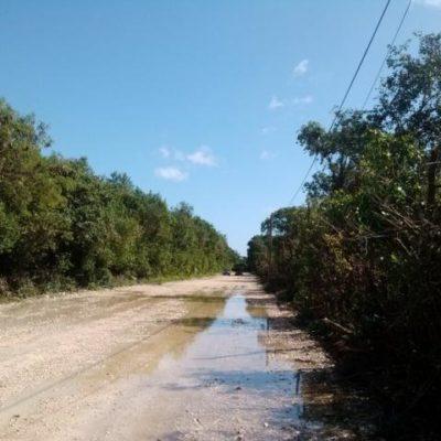 Revelan contaminación en la Riviera Maya por fisura en almacenamiento de aguas negras del complejo Bahía Príncipe