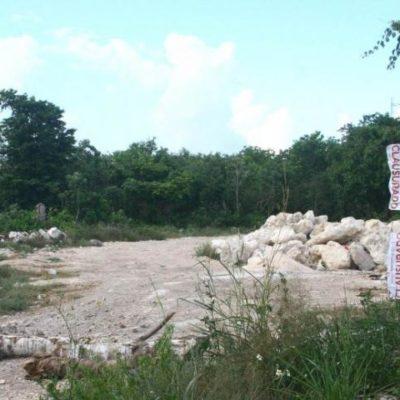 TARDÍA INTERVENCIÓN DE PROFEPA: A más de una semana del relleno de un cenote, clausura obras en presuntos terrenos de ex Alcalde