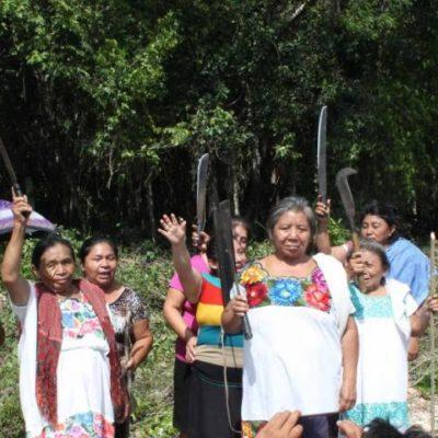 DISPUTAN TIERRAS EN MANUEL ANTONIO AY: Con machete en mano, mujeres defienden 22 hectáreas de terrenos ejidales