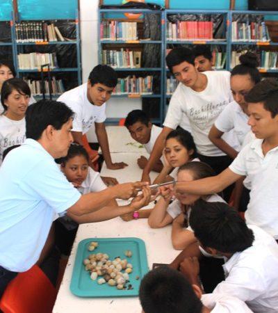 Celebran  el Día Municipal del Caracol Chivita en  Bacalar