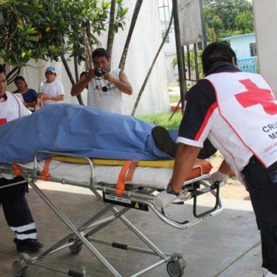 Hombre fallece tras ser aplastado por una madera en FCP