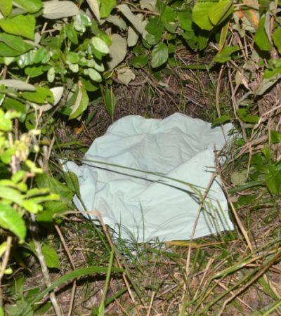 OTRA TRAGEDIA EN CARRETERA: Muere niño de un año al chocar vehículo contra una vaca en carretera de FCP