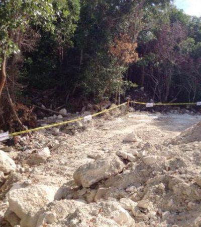 Denuncian presunto relleno de manglar para ampliación del hotel Azul Five en Playa del Carmen