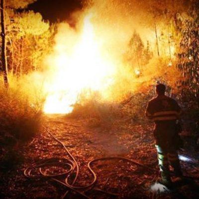 CAE AVIONETA EN CAMPECHE: Un muerto, saldo preliminar del accidente de la aeronave en el ejido Nuevo Michoacán