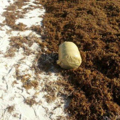 RECALA DROGA EN RIVIERA MAYA: Hallan paquete con 8 kilos de marihuana en playa entre Tulum y Akumal