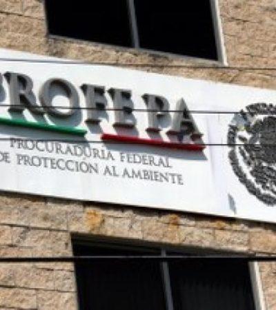 ANTICIPAN TIJERETAZO A BUROCRACIA FEDERAL: Por recortes, prevén despido en delegaciones de 10 estados, incluyendo QR