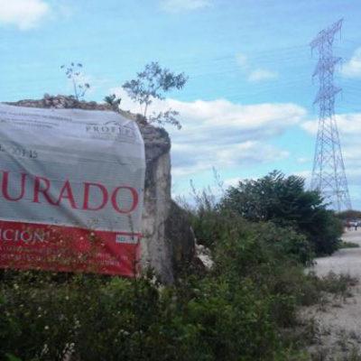 """""""ES PELIGROSO"""" INVERTIR EN MÉXICO: Tras cancelarse proyectos, empresas chinas dan la espalda a México"""