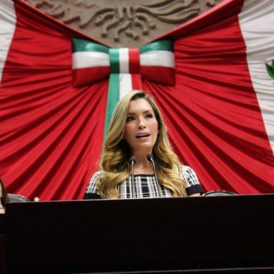 SALE CARO EL CALDO DE GABRIELA MEDRANO: Aumentan hasta 4.5 mdp la multa al PVEM por propaganda de la diputada federal de QR