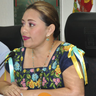 REFORMA POLÍTICA EN QR: Plantea PAN reelección de alcaldes y diputados por una sola ocasión