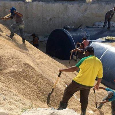 POLÉMICA POR GASOLINERA DE CANCÚN LLEGA AL CONGRESO: Piden en el Senado y en la Cámara de Diputados suspender obra en Pok Ta Pok